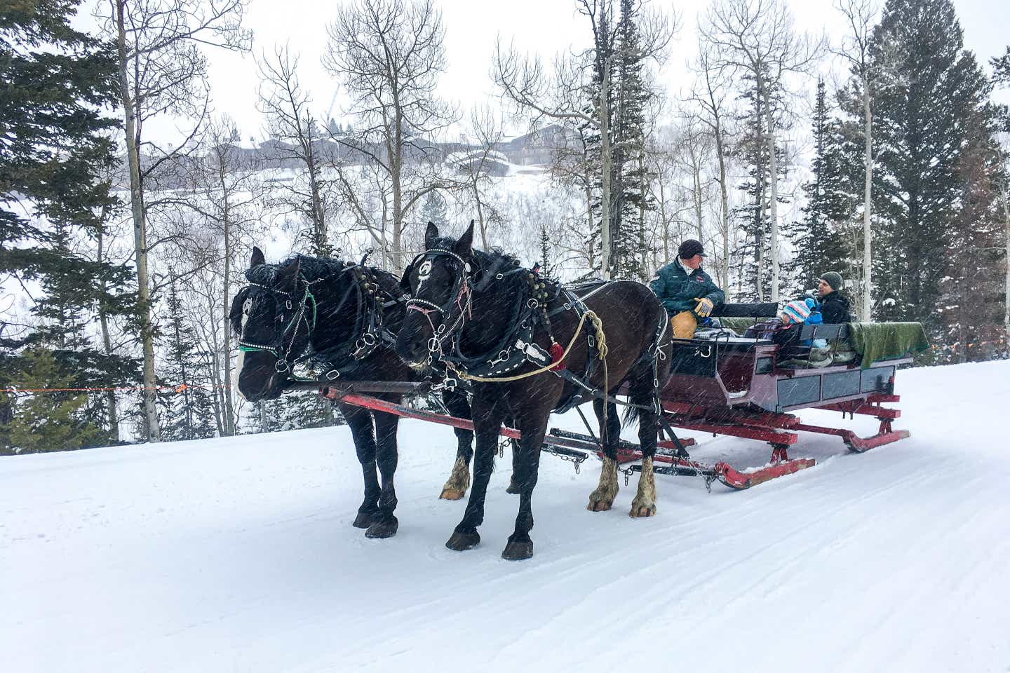 Jessica's family boards a two-horse open sleigh through the winter landscape as snowflakes fall.