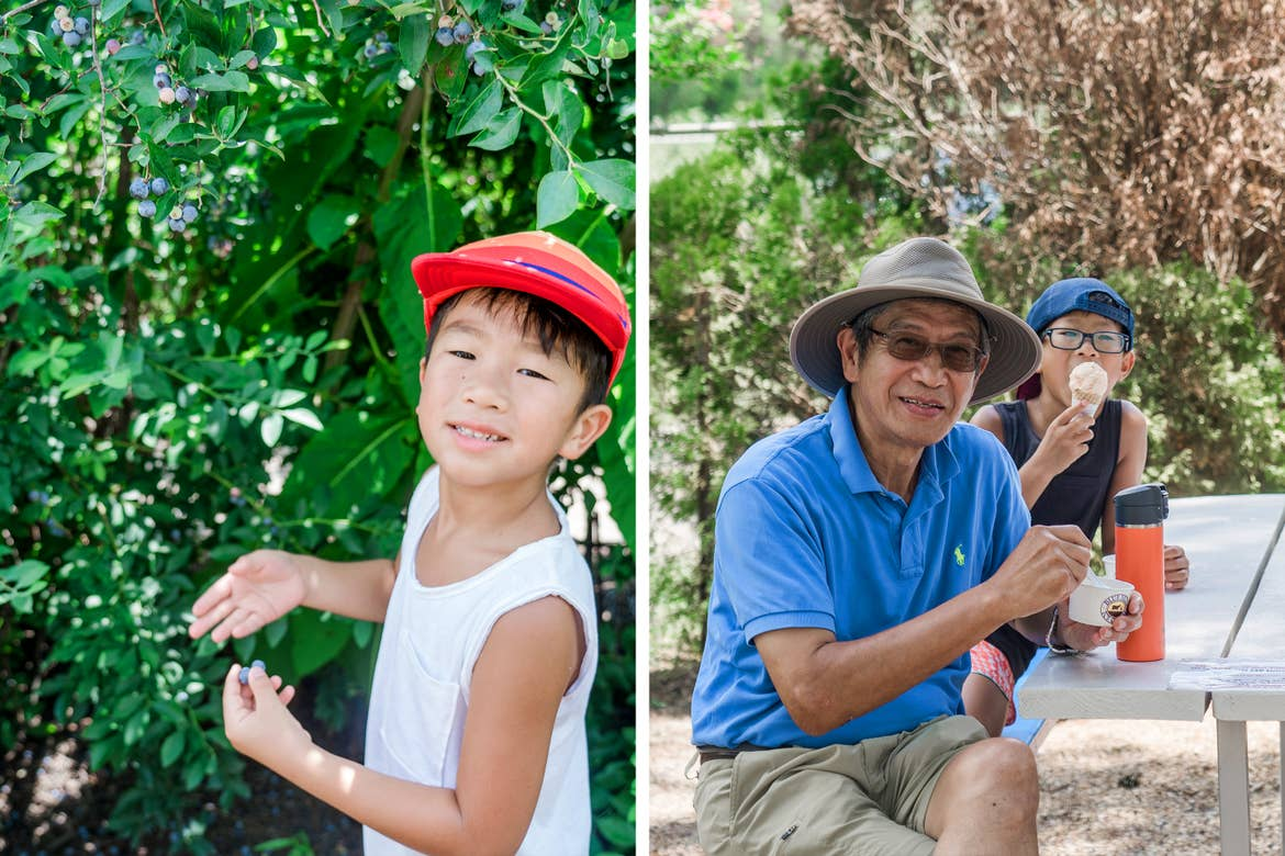 Left: A young Asian boy wearing a red baseball cap and white tank top picks blueberries at a farm. Right: An older Asian man (left) wearing a blue polo and sunhat enjoys some ice cream with a young Asian boy (right).