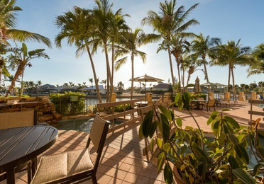 Outdoor seating with views of palm trees at Sunset Cove Resort