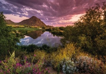 Sun setting over a beautiful view of a golf course, mountains, and lush desert flora in Arizona