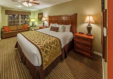 King bed in a studio room at Piney Shores Resort in Conroe, Texas