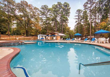 Outdoor pool with seating and sun umbrellas at Holly Lake Resort in Texas.
