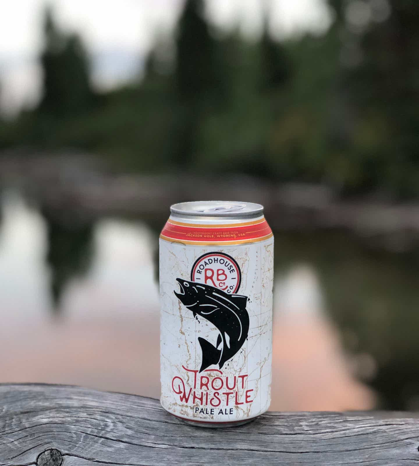 Jenn's beer from hikers