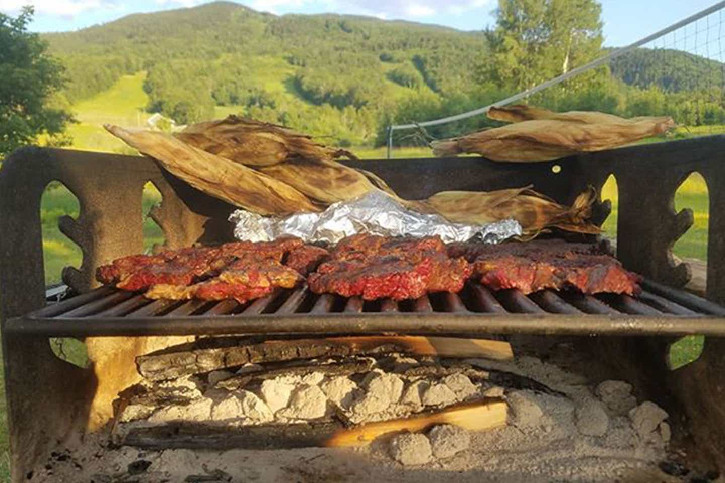 An exterior grill with different delectable meats.
