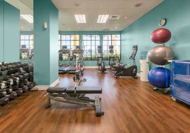 Fitness center with yoga balls, free weights, treadmills, and elliptical machines at Sunset Cove Resort