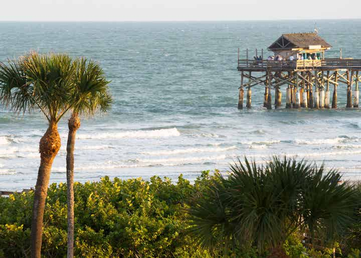 View of the ocean with a pier and palm trees