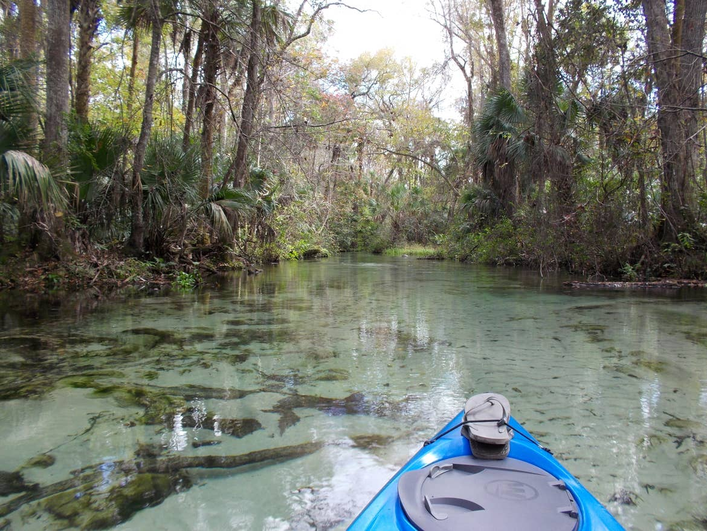 Kayak in the water at Florida's Wekiwa Springs