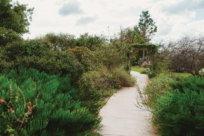 Lake Louisa walking path.