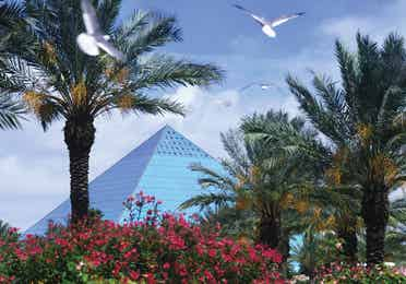 View of Moody Gardens with a pyramid in the background