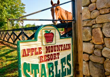 Horse stables at Apple Mountain Resort in Clarkesville, GA