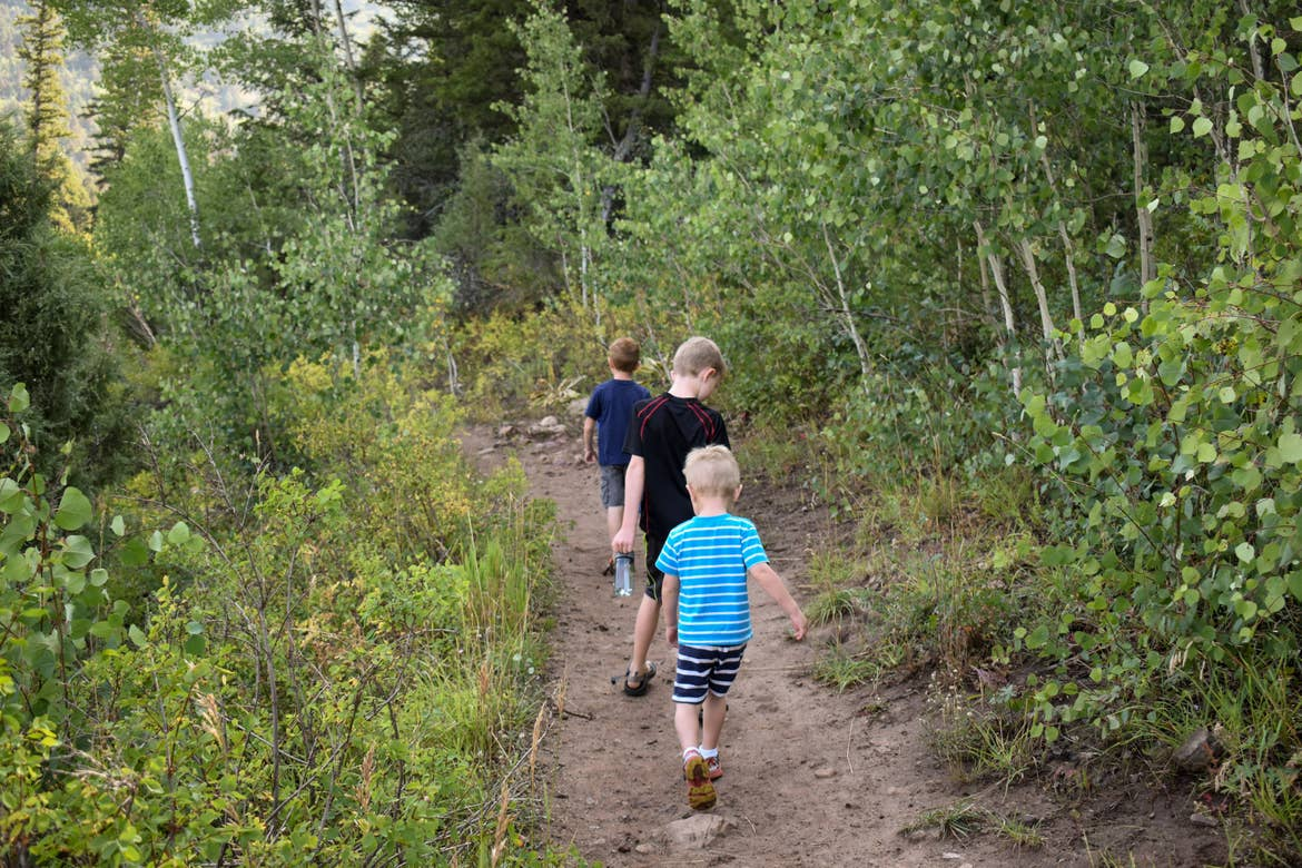 Jessica's three sons hiking through the woods in a line