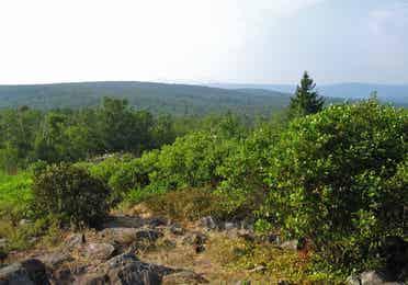 Appalachian Trail near Oak n Spruce Resort.