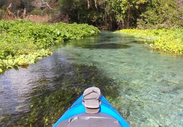 Kayak in the river surrounded by plant life