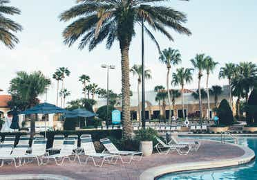 Pool surrounded by palm trees and sun chairs in North Village at Orange Lake Resort near Orlando, Florida