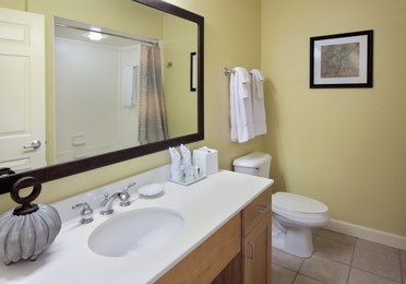 Bathroom with sink, large mirror, and toilet in a one-bedroom villa at Lake Geneva Resort