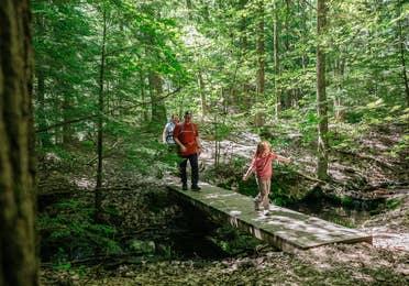 Family hiking in Greylock State Park near Oak n' Spruce Resort in South Lee, Massachusetts.