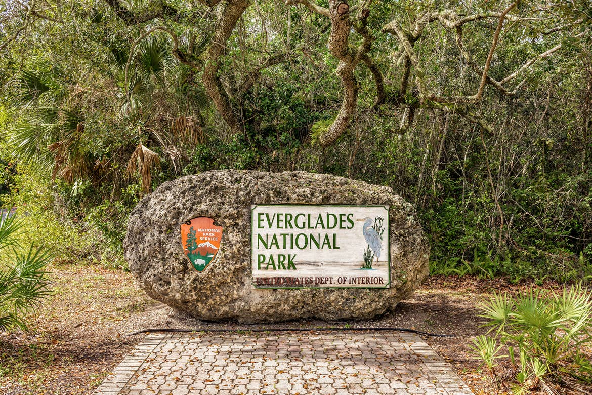 A rock containing the National Parks insignia that reads, 'Everglades National Park' under mossy trees on a brick-paved path.
