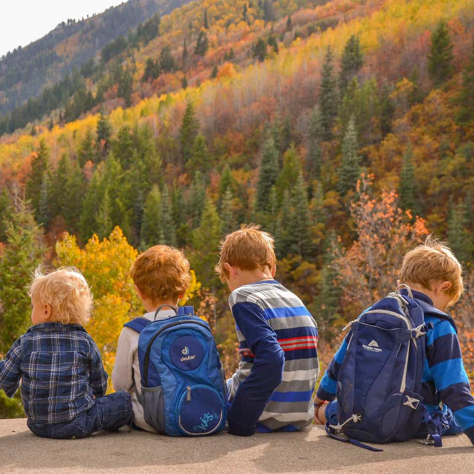 Four children sitting on ledge looking at colorful fall foliage.