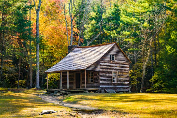 A log cabin surrounded by fall foliage in the forest of Cades Cove in the Smoky Mountains