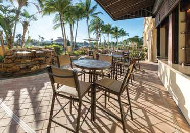 Outdoor seating surrounded by palm trees at Sunset Cove Resort