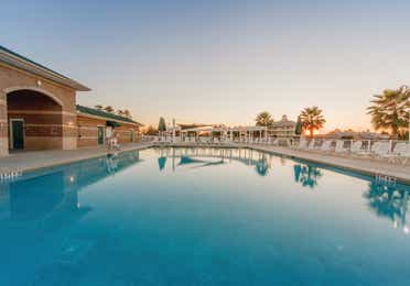 Pool surrounded by beach chairs and views of palm trees at Piney Shores Resort in Conroe, Texas
