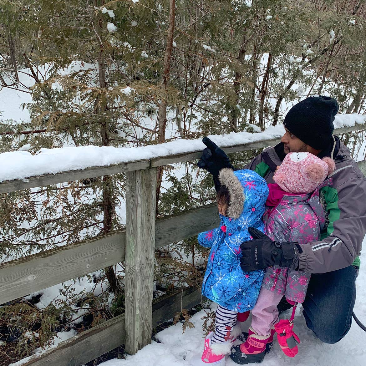 Rohan points out some greenery to Amarra and Myrra in the snow.