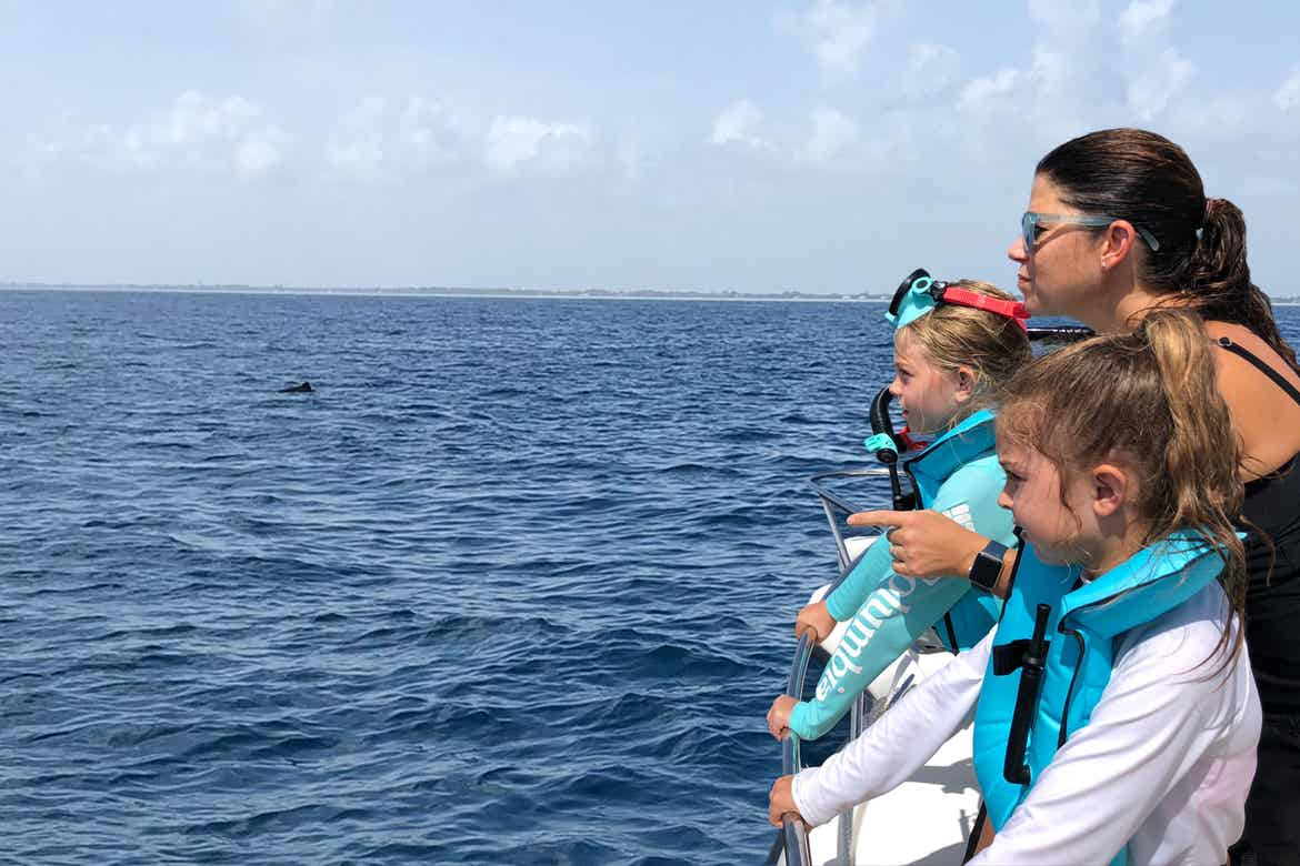 Featured Contributor, Chris Johnston (right), and her two daughters, Kyler (front-right) and Kyndall (back-left), wear multi-colored snorkel gear while watching a dolphin in the ocean.