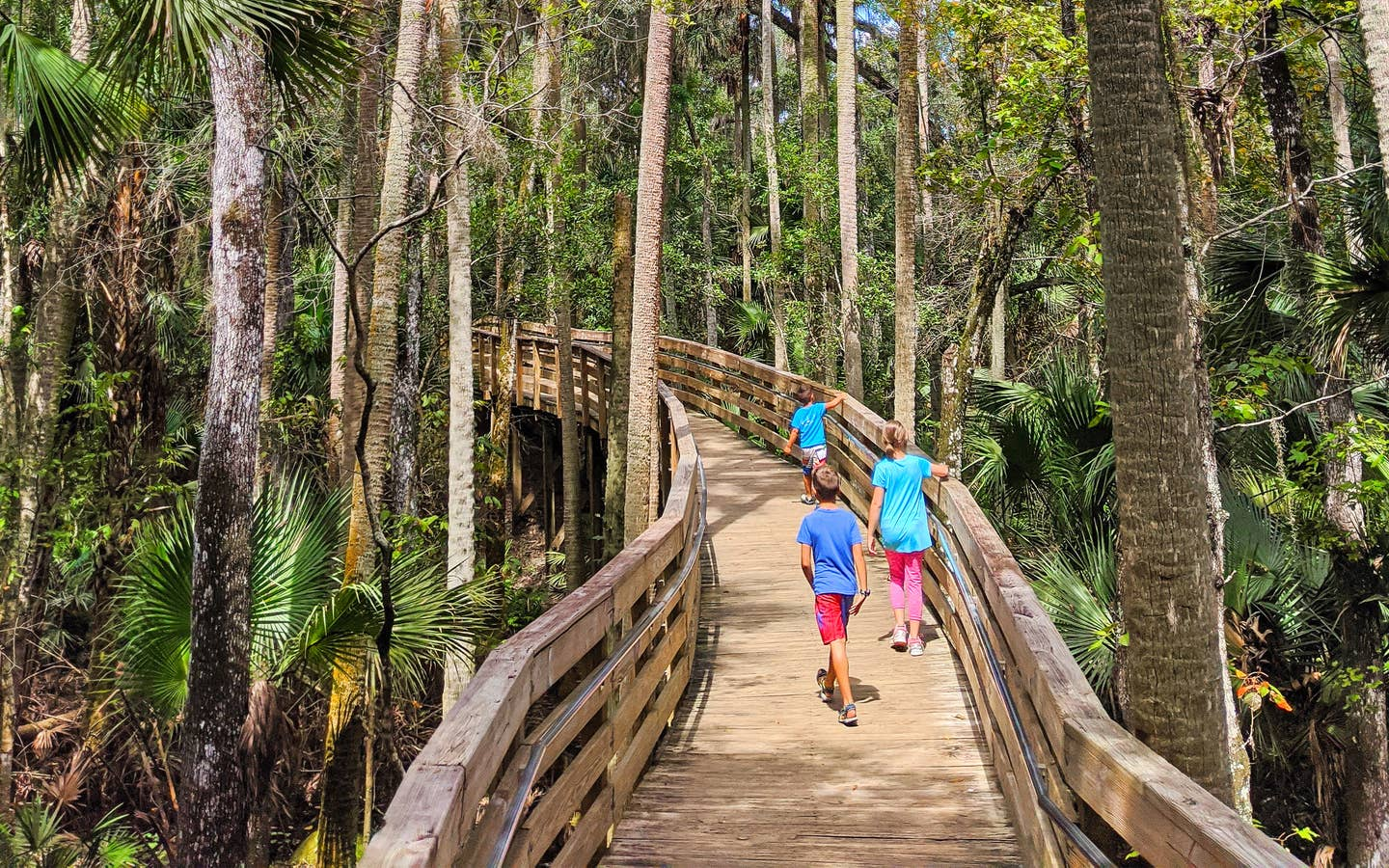 Two young boys and a young girl walk up a wooden trail bridge through some trees and over a creek.
