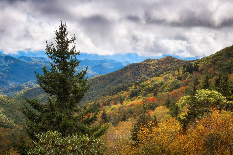 Fall foliage appears along the Blue Ridge Parkway near Asheville, North Carolina.