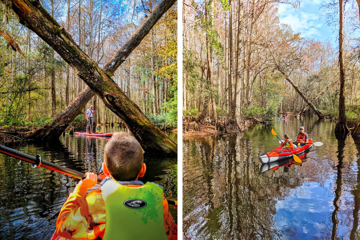 Left: A young boy wearing a neon green life jacket on a kayak holds a paddle and looks towards two trees criss-crossed over the river. Right: A young boy (front) and a man (right) sit in a red kayak with paddles on a river.