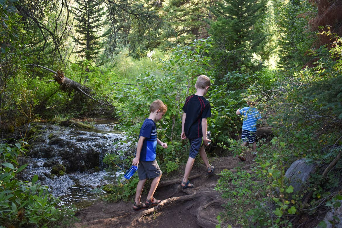 Jessica's three sons hiking in a line past a creek