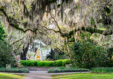 Golden statue surrounded by mossy oak trees and azalea bushes