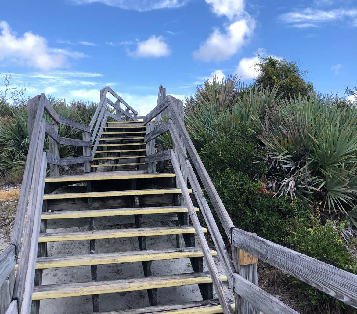 Wooden pathway at Jonathan Dickinson State Park in Hobe Sound, Florida.