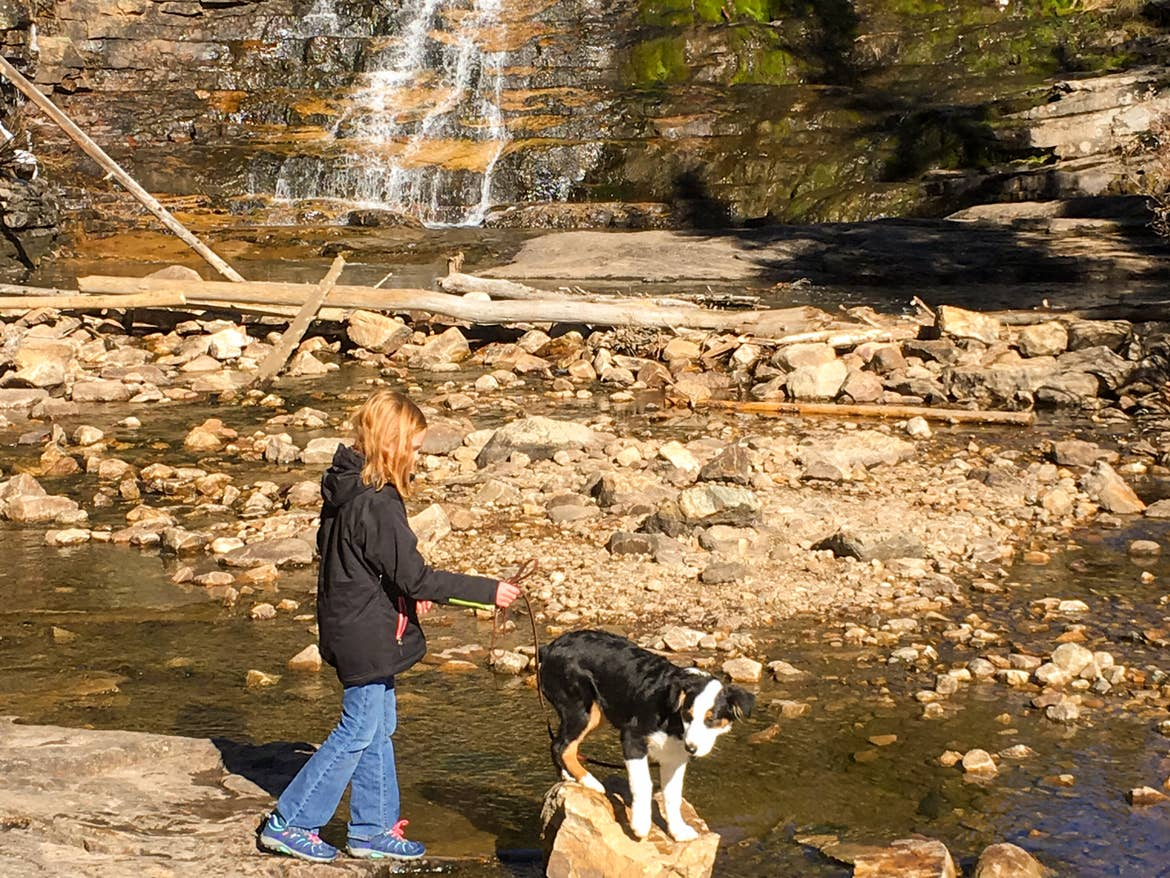 Jessica's daughter walking the dog through a creek