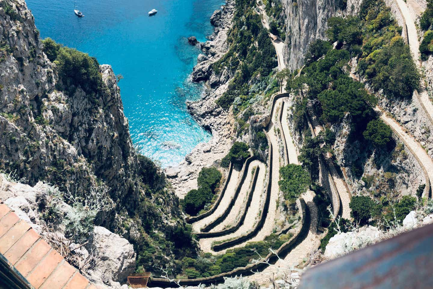 The cliffside of the Capri mountains with winding roads and trees lining the road above the ocean.