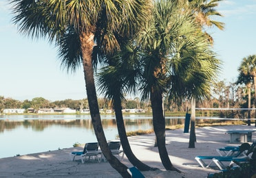 Beach chairs on sand in front of lake surrounded by palm trees in West Village at Orange Lake Resort near Orlando, Florida
