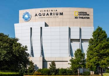 Virginia Marine Center near Williamsburg Resort in Williamsburg, Virginia.