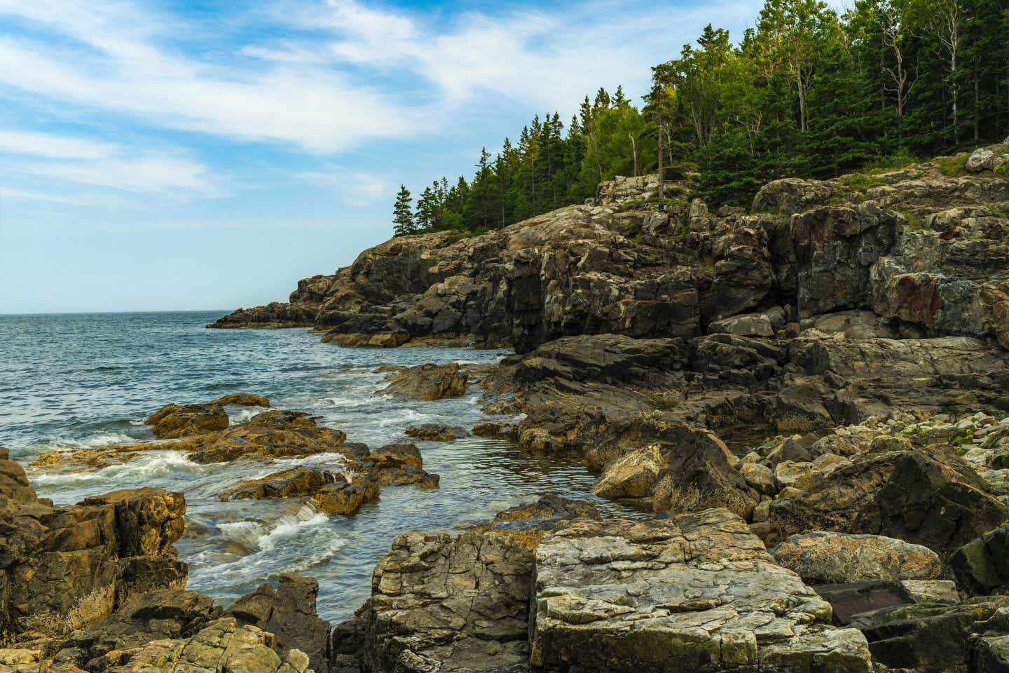 Acadia National Park with pine trees and rock formations near the coastline.