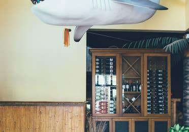 Shark decor in Tradewinds Bar & Grill in River Island at Orange Lake Resort near Orlando, Florida