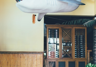 Shark decor in Tradewinds Bar & Grill in River Island at Orange Lake Resort near Orlando, Florida