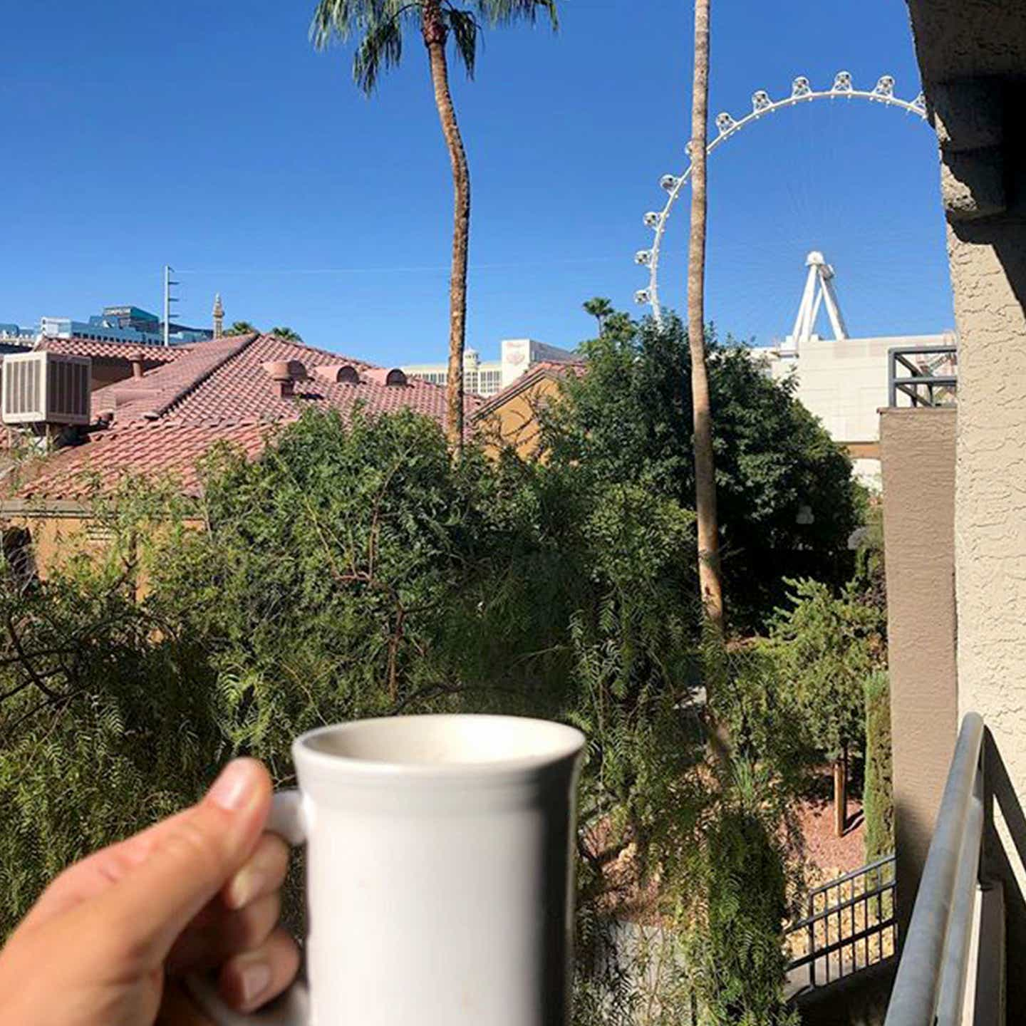 A guest holds a white coffee mug outside as a Ferris Wheel and palm trees are seen in front of a blue sky at our Desert Club Resort.