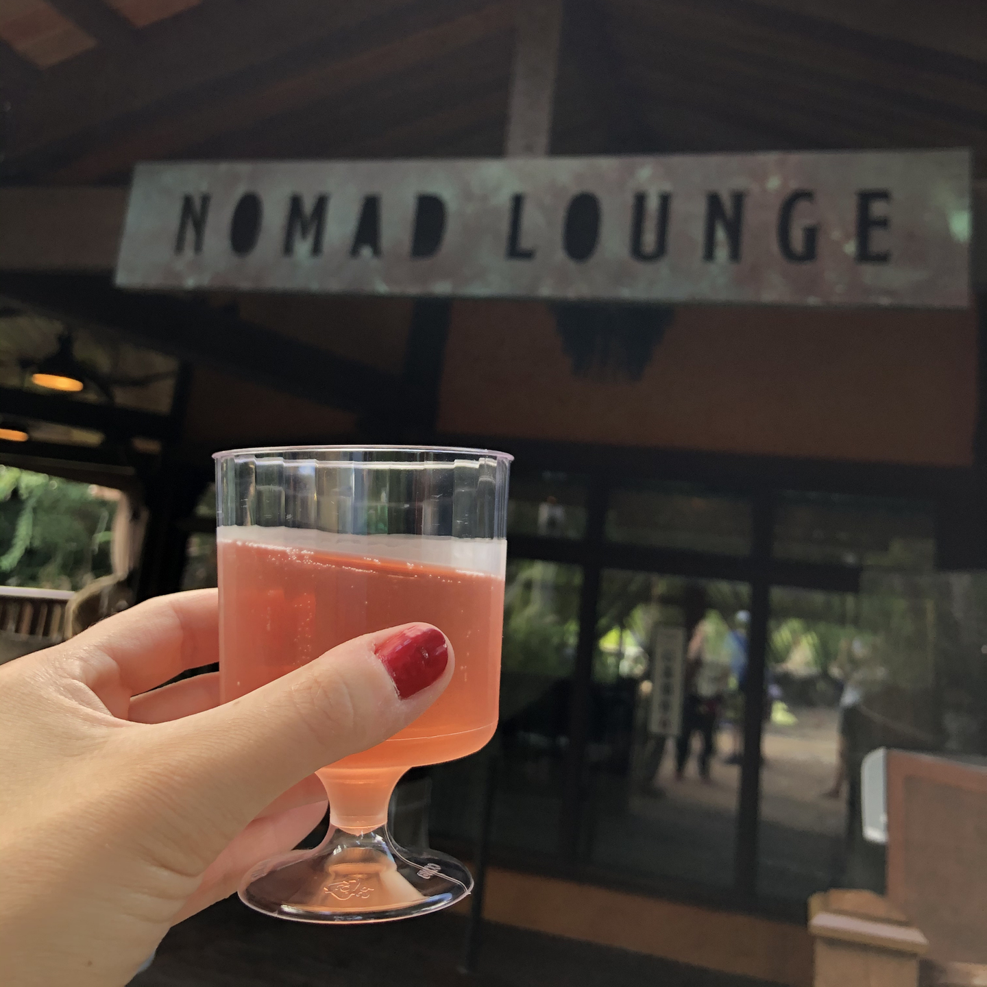 Author, Kelly Nelson, holds a cup of Graham Beck Sparkling Rose outside the Nomad Lounge at Disney's Animal Kingdom Theme Park at Walt Disney World® Resort.