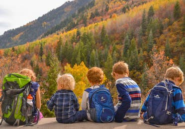 Five children sitting on ledge looking at colorful fall foliage.