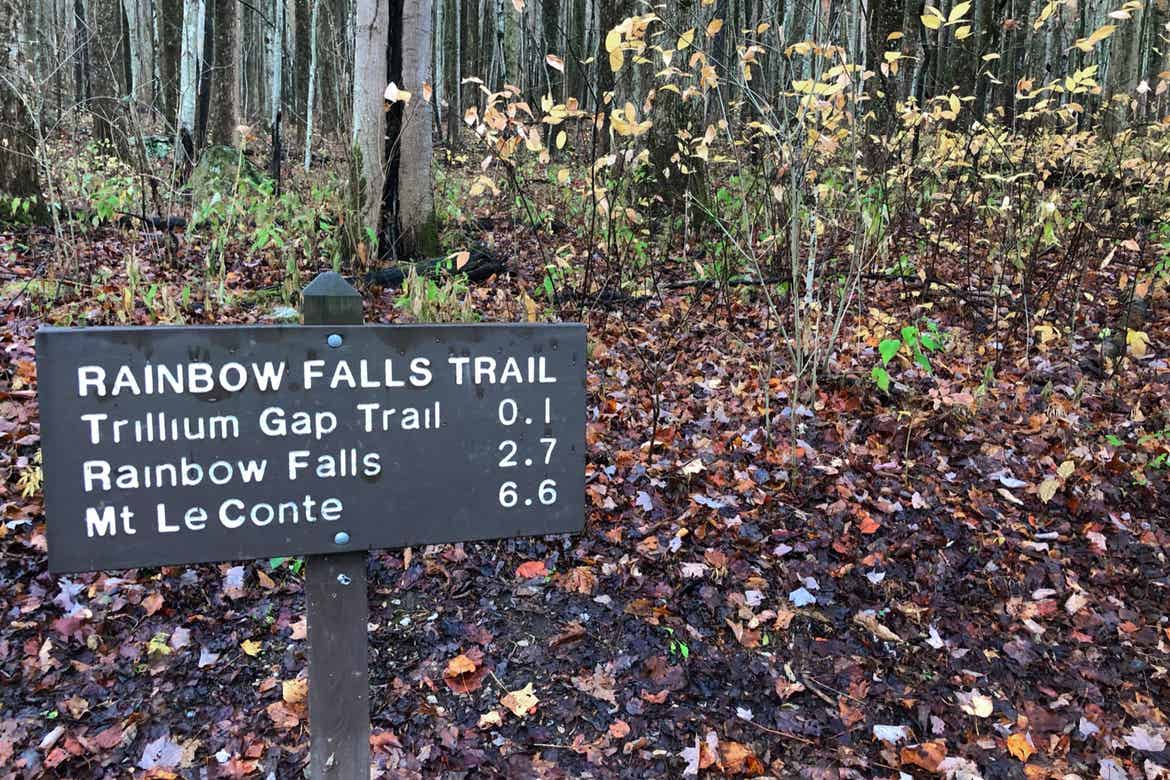 A trail sign surrounded by fallen leaves reads, 'Rainbow Falls Trail.'