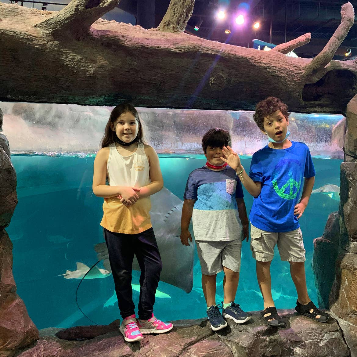 A young girls and two boys stand in front of a stingray enclosure.