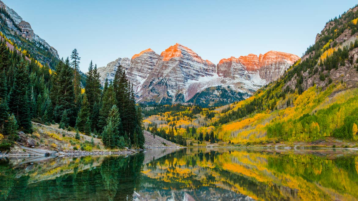 Yellow, gold and green fall foliage with snow-capped mountains in the background at Maroon Bells in Aspen, Colorado