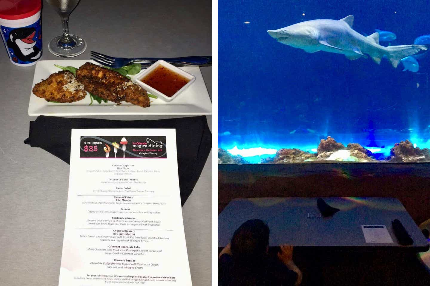 Left: An appetizer of coconut chicken tenders and dipping sauce sit above a menu. Right: Dakota is seated in front of an aquarium to view sharks while dining.
