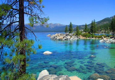 View of Lake Tahoe surrounded by pine trees