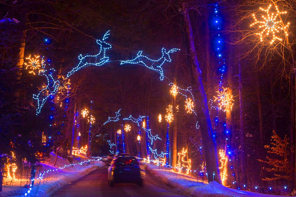 A car drives under reindeer lights and trees clad with Christmas string lights.
