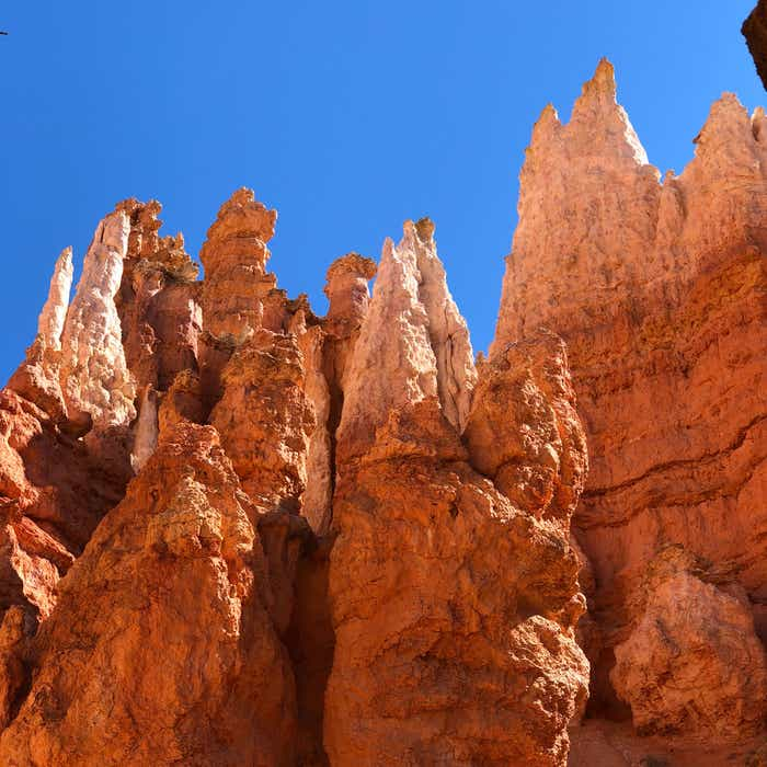 Red Rock formations from Bryce Canyon National Park with a bright blue sky.